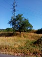 Predaj Pozemok Banská Belá